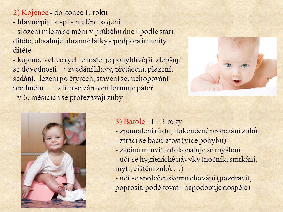 2) Kojenec - do konce 1. roku - hlavně pije a spí - nejlépe kojení - složení mléka se mění v průběhu dne i podle stáří dítěte, obsahuje obranné látky