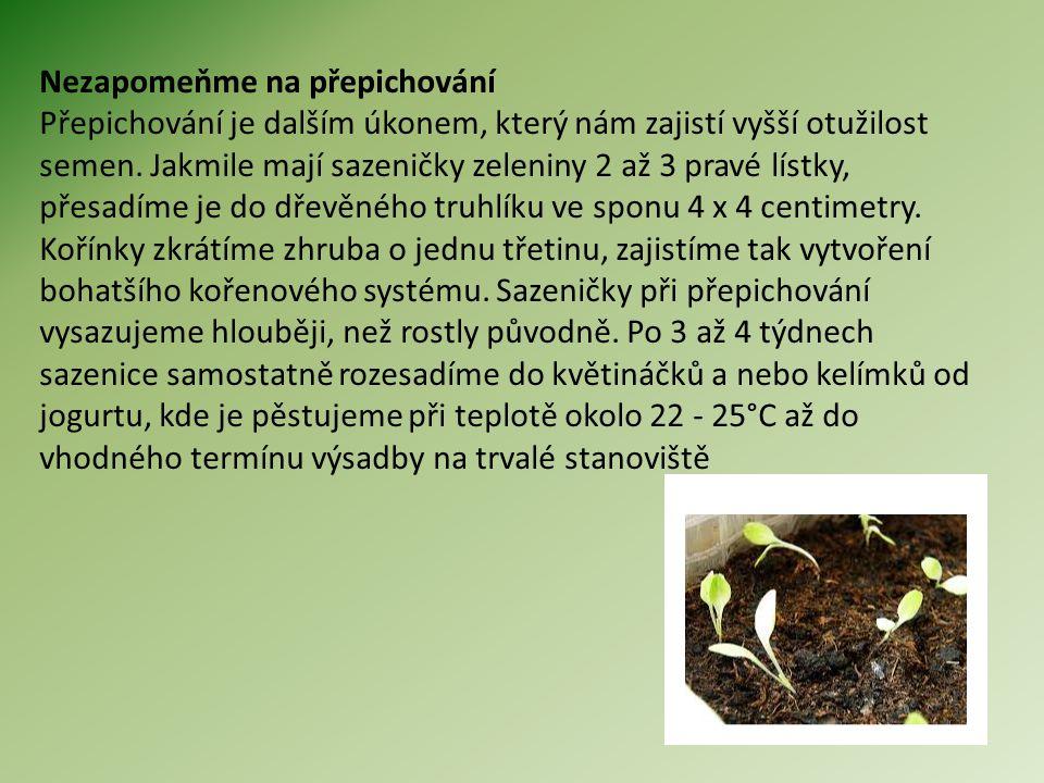 Pracovní list Vyjmenuj postup při výsevu a sadbě zeleniny.