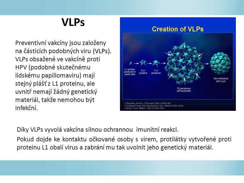 (VLPs). Preventivní vakcíny jsou založeny na částicích podobných viru (VLPs). VLPs obsažené ve vakcíně proti HPV (podobné skutečnému lidskému papillom