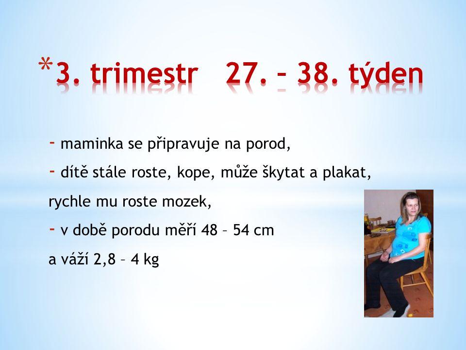 - maminka se připravuje na porod, - dítě stále roste, kope, může škytat a plakat, rychle mu roste mozek, - v době porodu měří 48 – 54 cm a váží 2,8 – 4 kg