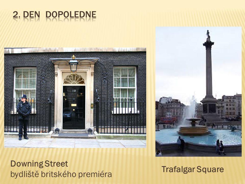 Downing Street bydliště britského premiéra Trafalgar Square