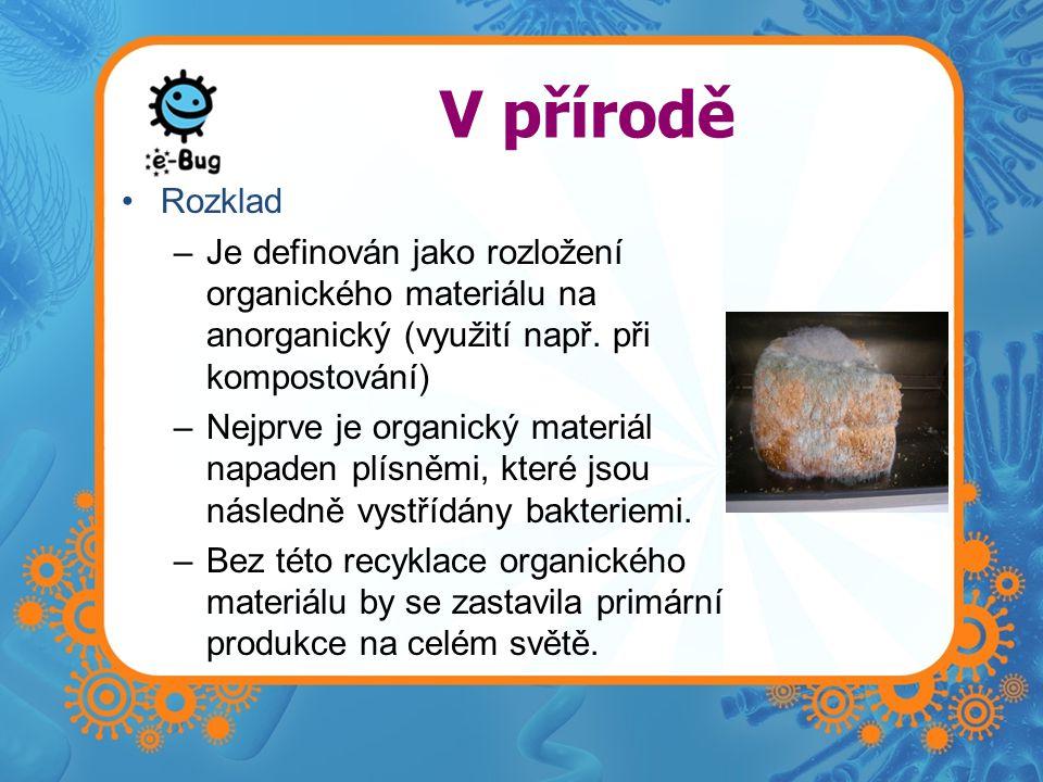 V přírodě Rozklad –Je definován jako rozložení organického materiálu na anorganický (využití např. při kompostování) –Nejprve je organický materiál na