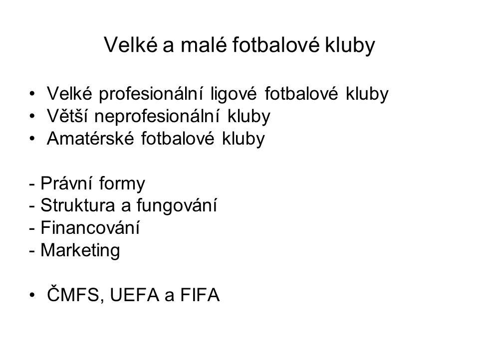 Velké a malé fotbalové kluby Velké profesionální ligové fotbalové kluby Větší neprofesionální kluby Amatérské fotbalové kluby - Právní formy - Struktura a fungování - Financování - Marketing ČMFS, UEFA a FIFA