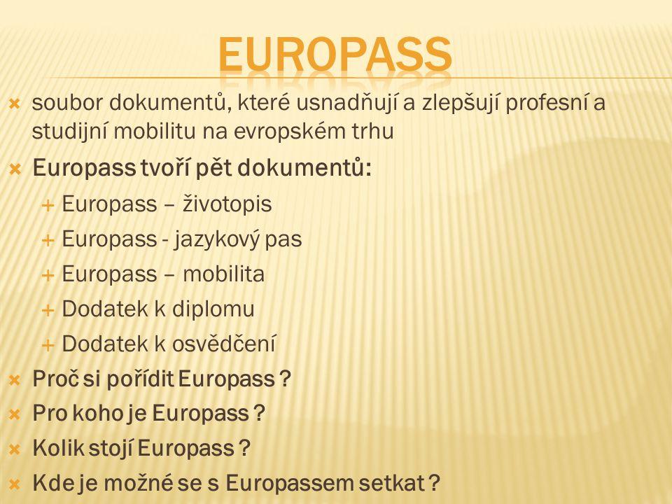  soubor dokumentů, které usnadňují a zlepšují profesní a studijní mobilitu na evropském trhu  Europass tvoří pět dokumentů:  Europass – životopis 