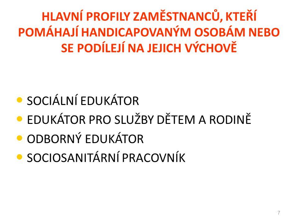 Smluvní podmínky Společná státní smlouva pro sociální sdružení: Smlouva bere v potaz 10 úrovní Některé příklady: Edukátor s diplomem je na 6.