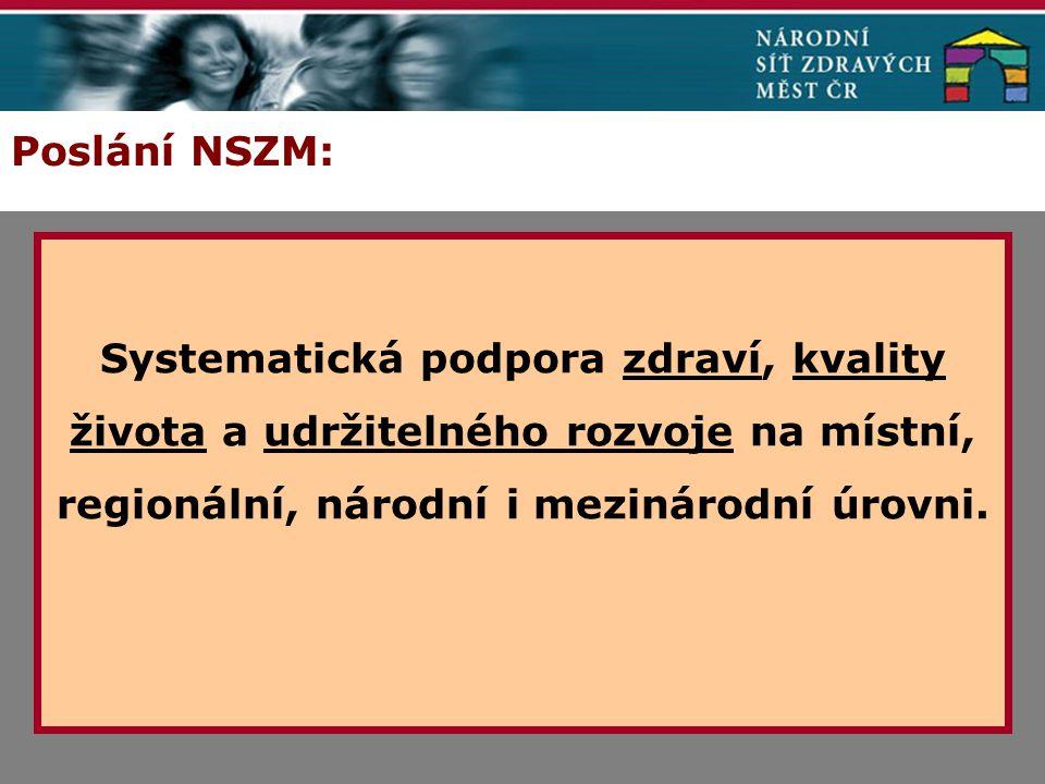 Poslání NSZM: Systematická podpora zdraví, kvality života a udržitelného rozvoje na místní, regionální, národní i mezinárodní úrovni.