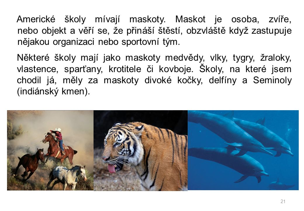 Některé školy mají jako maskoty medvědy, vlky, tygry, žraloky, vlastence, sparťany, krotitele či kovboje.