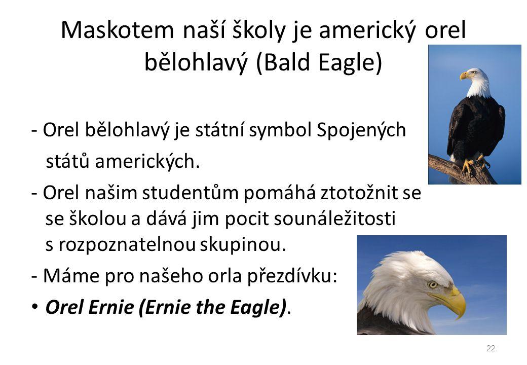 Maskotem naší školy je americký orel bělohlavý (Bald Eagle) - Orel bělohlavý je státní symbol Spojených států amerických. - Orel našim studentům pomáh