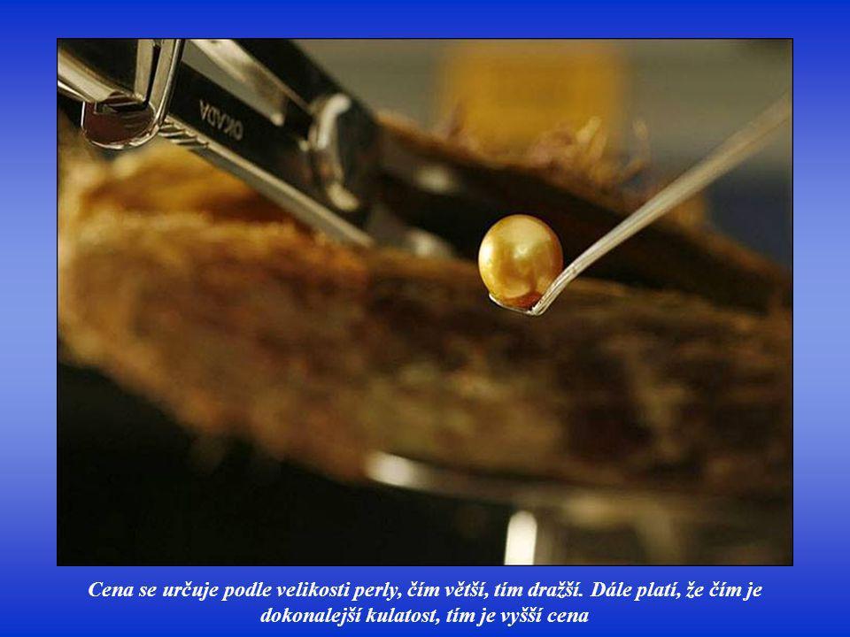 Posledním zázrakem je japonská sladkovodní perla vypěstovaná v roce 1994, která je růžová až načervenalá