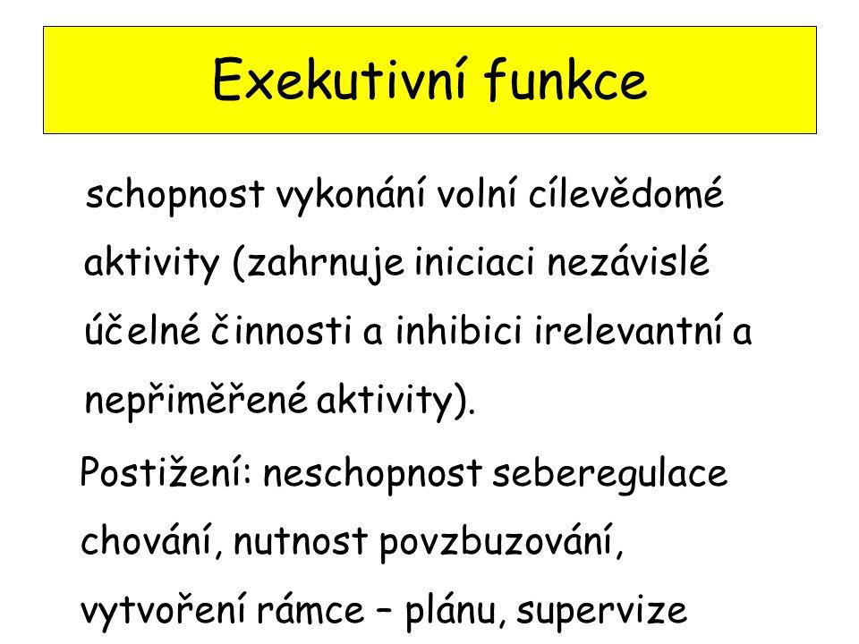 Exekutivní funkce schopnost vykonání volní cílevědomé aktivity (zahrnuje iniciaci nezávislé účelné činnosti a inhibici irelevantní a nepřiměřené aktiv