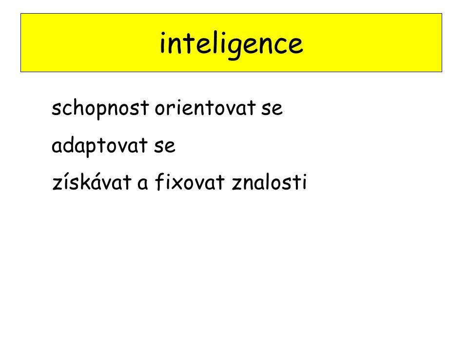 inteligence schopnost orientovat se adaptovat se získávat a fixovat znalosti