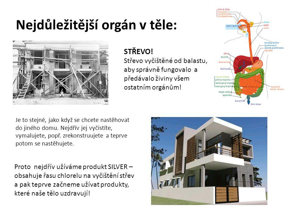 Nejdůležitější orgán v těle: STŘEVO! Střevo vyčištěné od balastu, aby správně fungovalo a předávalo živiny všem ostatním orgánům! Je to stejné, jako k