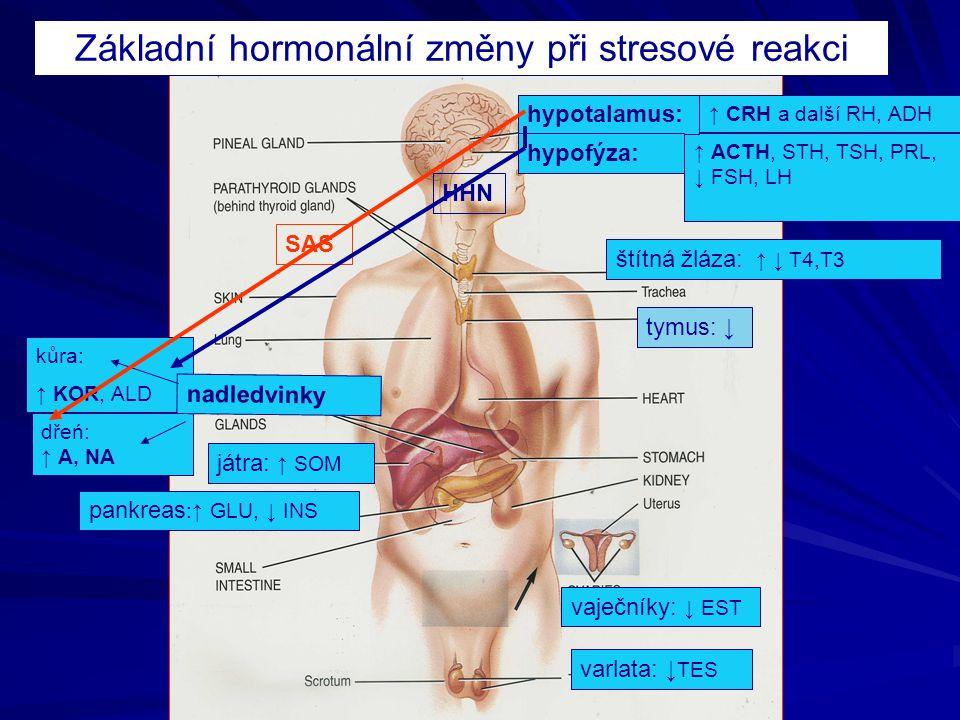 ↑ CRH a další RH, ADH ↑ ACTH, STH, TSH, PRL, ↓ FSH, LH kůra: ↑ KOR, ALD dřeń: ↑ A, NA nadledvinky hypotalamus: hypofýza: štítná žláza: ↑ ↓ T4,T3 varlata: ↓ TES vaječníky: ↓ EST pankreas :↑ GLU, ↓ INS játra: ↑ SOM Základní hormonální změny při stresové reakci tymus: ↓ SAS HHN