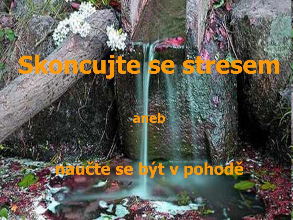 1 Collegiate Association Research for Principle Skoncujte se stresem aneb naučte se být v pohodě Skoncujte se stresem aneb naučte se být v pohodě