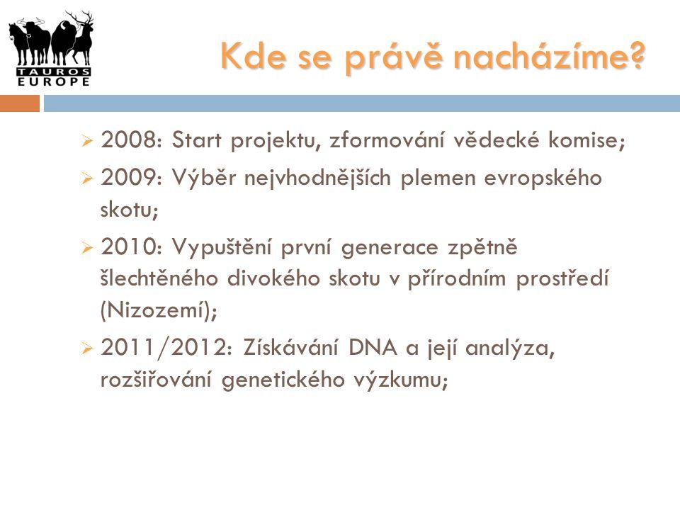 Kde se právě nacházíme?  2008: Start projektu, zformování vědecké komise;  2009: Výběr nejvhodnějších plemen evropského skotu;  2010: Vypuštění prv