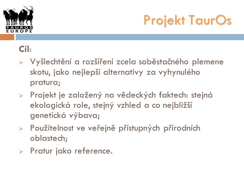 Projekt TaurOs Cíl:  Vyšlechtění a rozšíření zcela soběstačného plemene skotu, jako nejlepší alternativy za vyhynulého pratura;  Projekt je založený