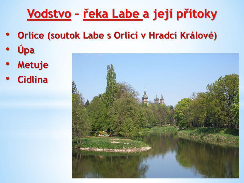 Vodstvo – řeka Labe a její přítoky Orlice (soutok Labe s Orlicí v Hradci Králové) Orlice (soutok Labe s Orlicí v Hradci Králové) Úpa Úpa Metuje Metuje