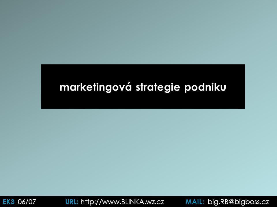 marketingová strategie podniku