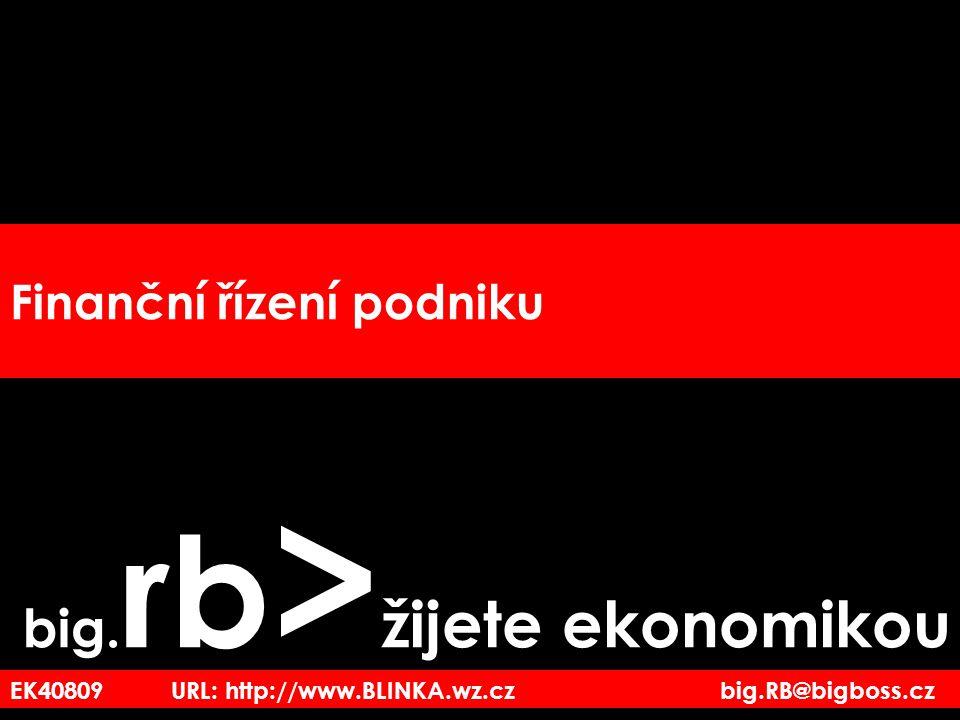 EK40809 URL: http://www.BLINKA.wz.cz big.RB@bigboss.cz Finanční řízení podniku big. rb > žijete ekonomikou