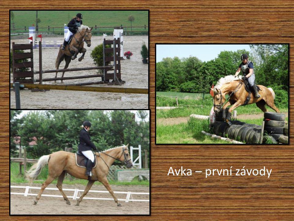 První soutěž s mladými jezdci Lucka Vašátková – 5. místo