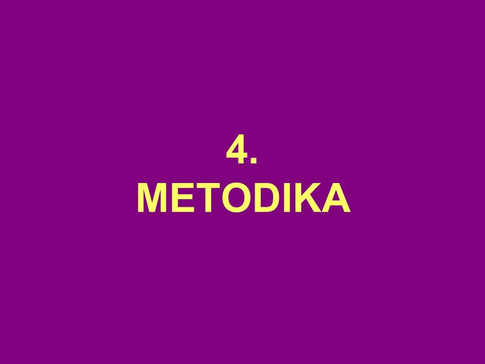 4. METODIKA