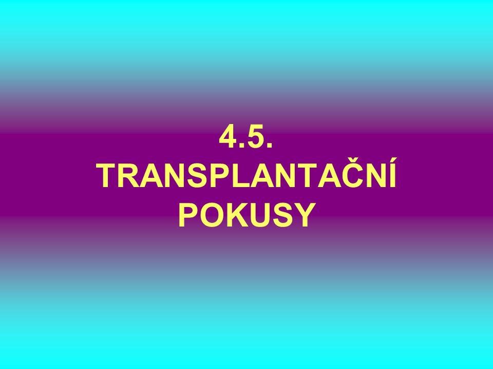 4.5. TRANSPLANTAČNÍ POKUSY