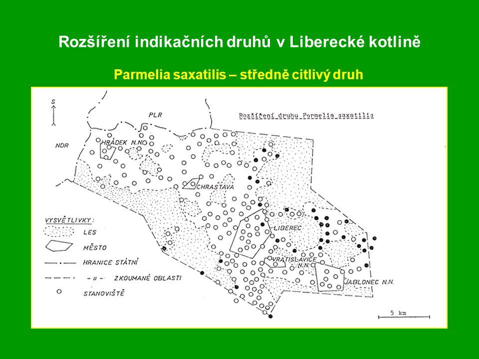 Rozšíření indikačních druhů v Liberecké kotlině Parmelia saxatilis – středně citlivý druh