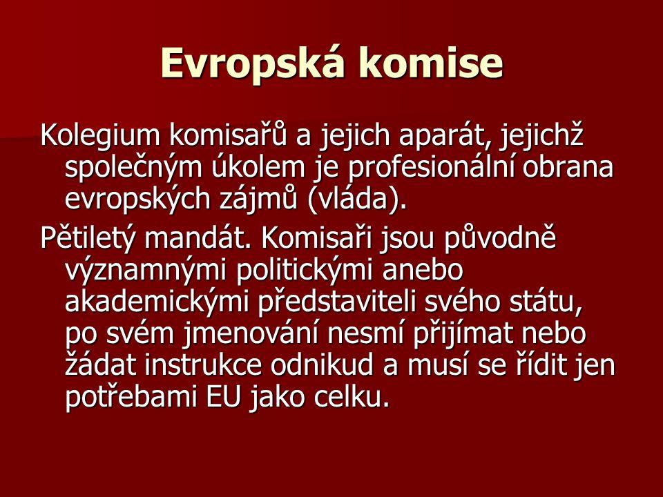 Evropská komise Kolegium komisařů a jejich aparát, jejichž společným úkolem je profesionální obrana evropských zájmů (vláda). Pětiletý mandát. Komisař
