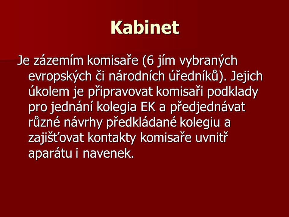 Kabinet Je zázemím komisaře (6 jím vybraných evropských či národních úředníků). Jejich úkolem je připravovat komisaři podklady pro jednání kolegia EK