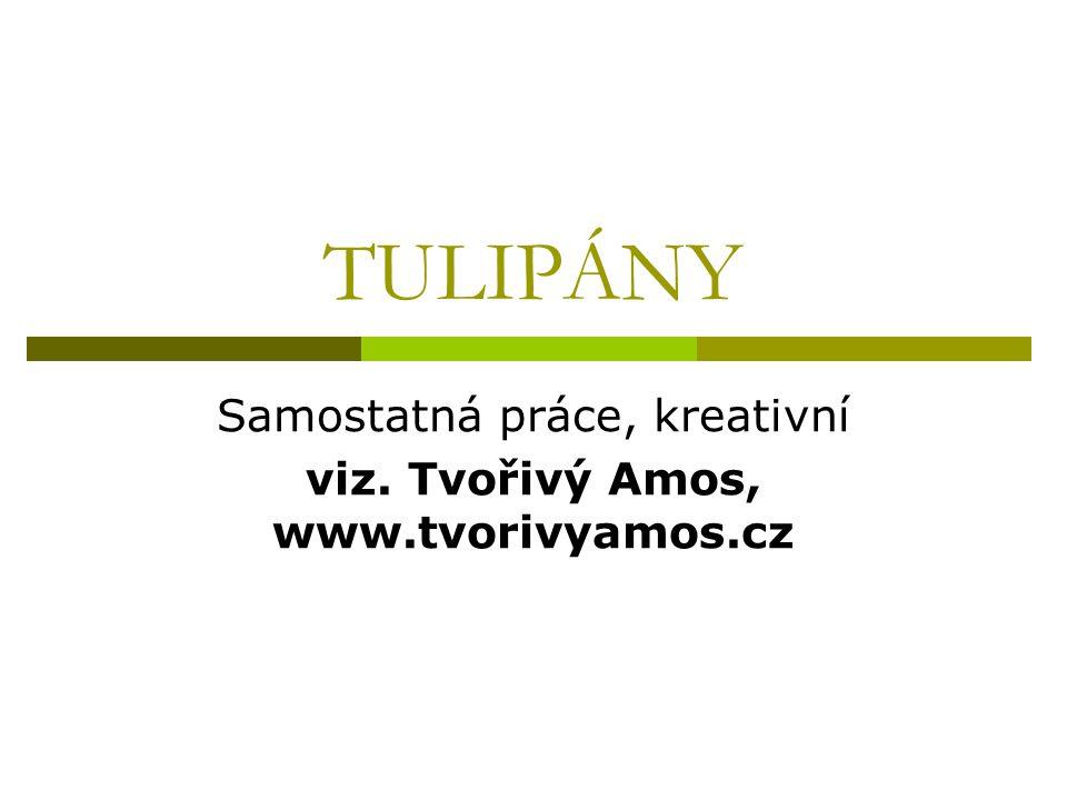 TULIPÁNY Samostatná práce, kreativní viz. Tvořivý Amos, www.tvorivyamos.cz