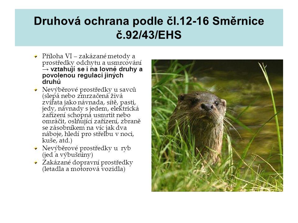 Druhová ochrana podle čl.12-16 Směrnice č.92/43/EHS Příloha VI – zakázané metody a prostředky odchytu a usmrcování → vztahují se i na lovné druhy a po