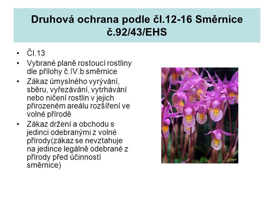 Druhová ochrana podle čl.12-16 Směrnice č.92/43/EHS Čl.13 Vybrané planě rostoucí rostliny dle přílohy č.IV.b směrnice Zákaz úmyslného vyrývání, sběru,