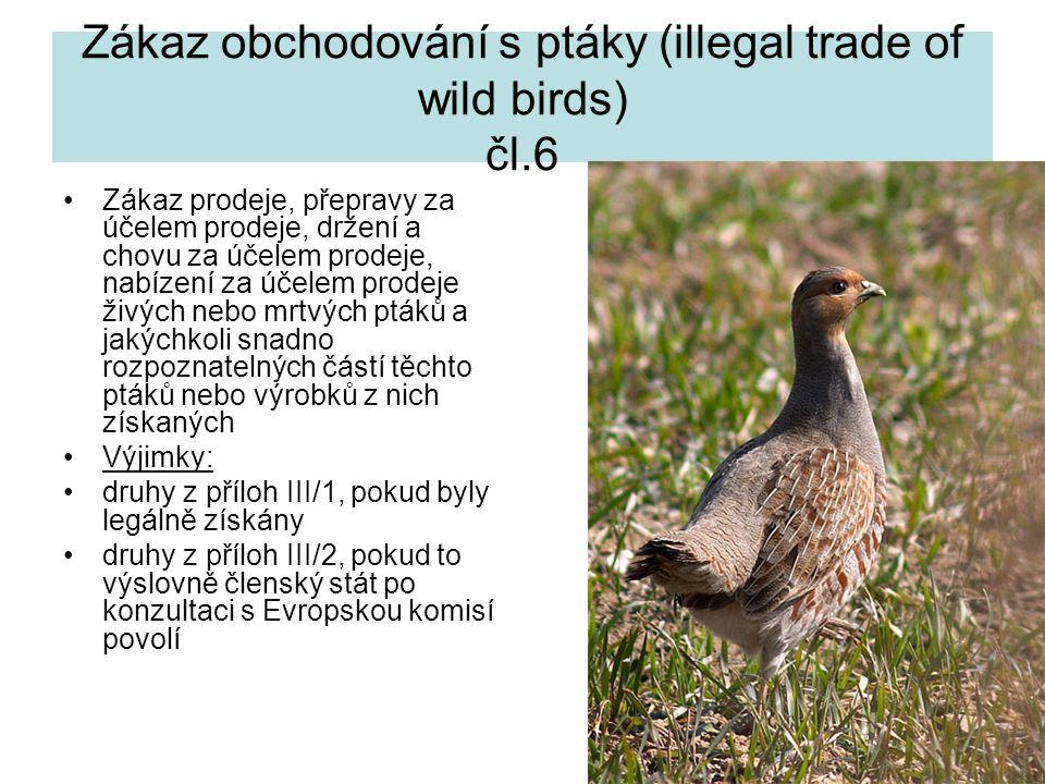 18 Zákaz obchodování s ptáky (illegal trade of wild birds) čl.6 Zákaz prodeje, přepravy za účelem prodeje, držení a chovu za účelem prodeje, nabízení