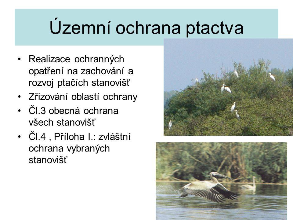 26 Územní ochrana ptactva Realizace ochranných opatření na zachování a rozvoj ptačích stanovišť Zřizování oblastí ochrany Čl.3 obecná ochrana všech st