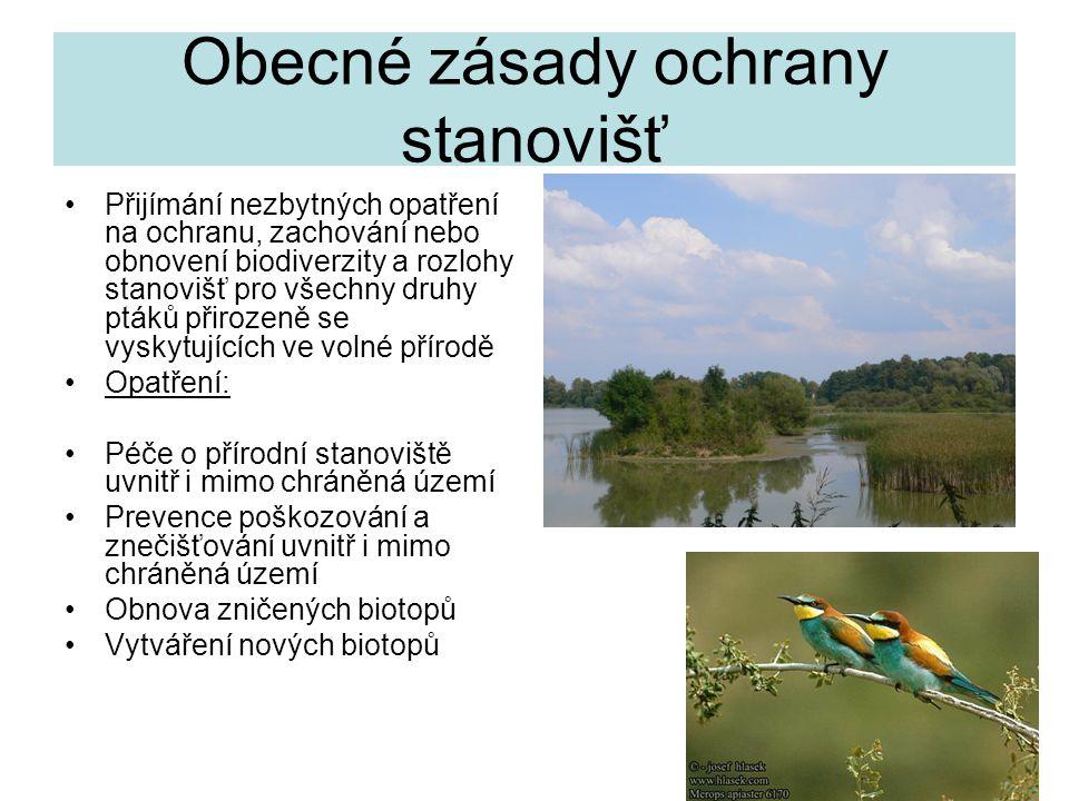 27 Obecné zásady ochrany stanovišť Přijímání nezbytných opatření na ochranu, zachování nebo obnovení biodiverzity a rozlohy stanovišť pro všechny druh