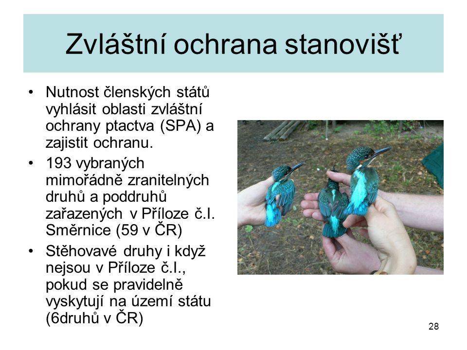 28 Zvláštní ochrana stanovišť Nutnost členských států vyhlásit oblasti zvláštní ochrany ptactva (SPA) a zajistit ochranu. 193 vybraných mimořádně zran