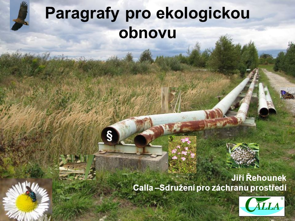 Paragrafy pro ekologickou obnovu Jiří Řehounek Calla –Sdružení pro záchranu prostředí §
