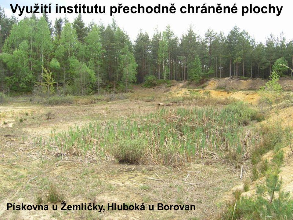 Pískovna u Žemličky, Hluboká u Borovan Využití institutu přechodně chráněné plochy