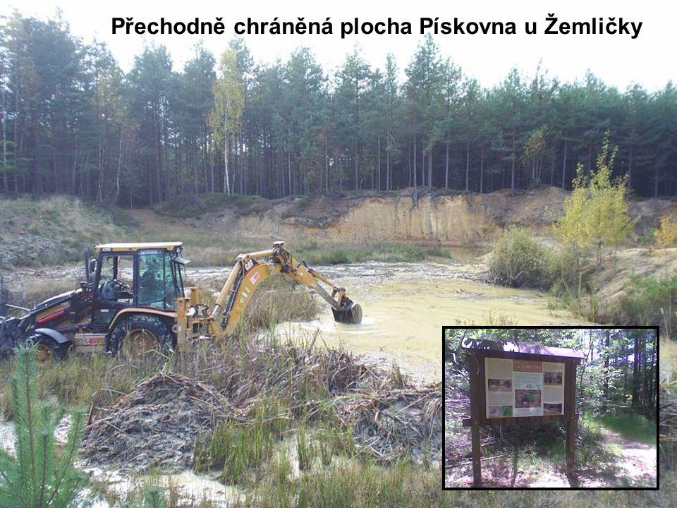 Přechodně chráněná plocha Pískovna u Žemličky