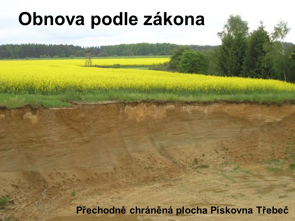 Přechodně chráněná plocha Pískovna Třebeč Obnova podle zákona