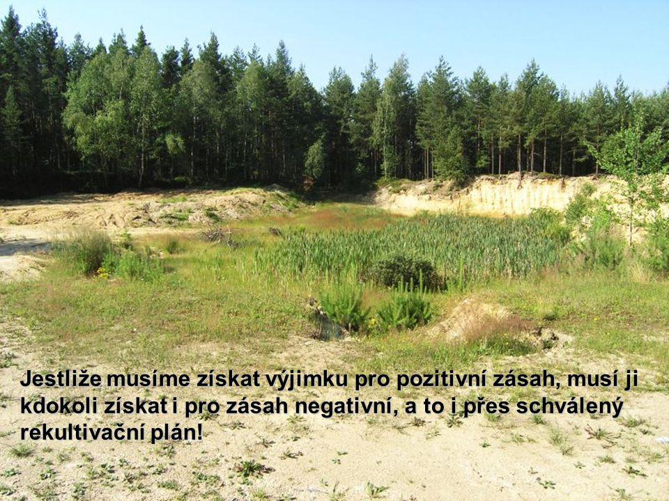 Jestliže musíme získat výjimku pro pozitivní zásah, musí ji kdokoli získat i pro zásah negativní, a to i přes schválený rekultivační plán!