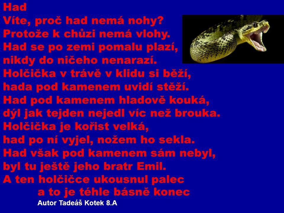Had Víte, proč had nemá nohy? Protože k chůzi nemá vlohy. Had se po zemi pomalu plazí, nikdy do ničeho nenarazí. Holčička v trávě v klidu si běží, had