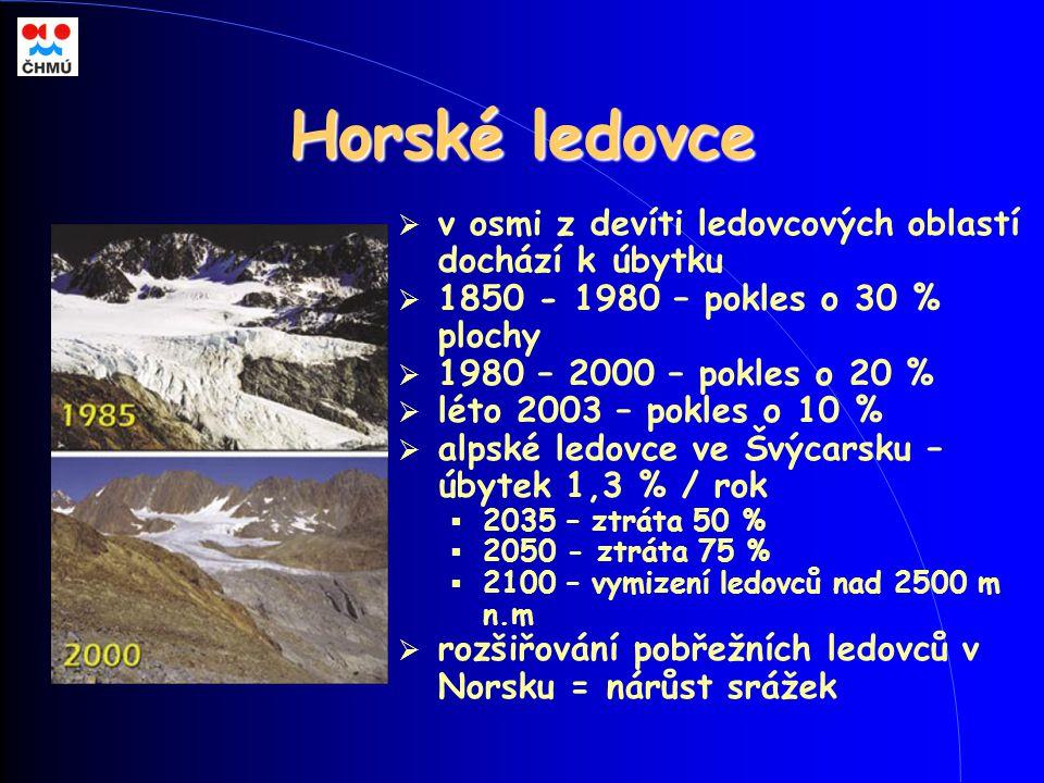 Horské ledovce  v osmi z devíti ledovcových oblastí dochází k úbytku  1850 - 1980 – pokles o 30 % plochy  1980 – 2000 – pokles o 20 %  léto 2003 –