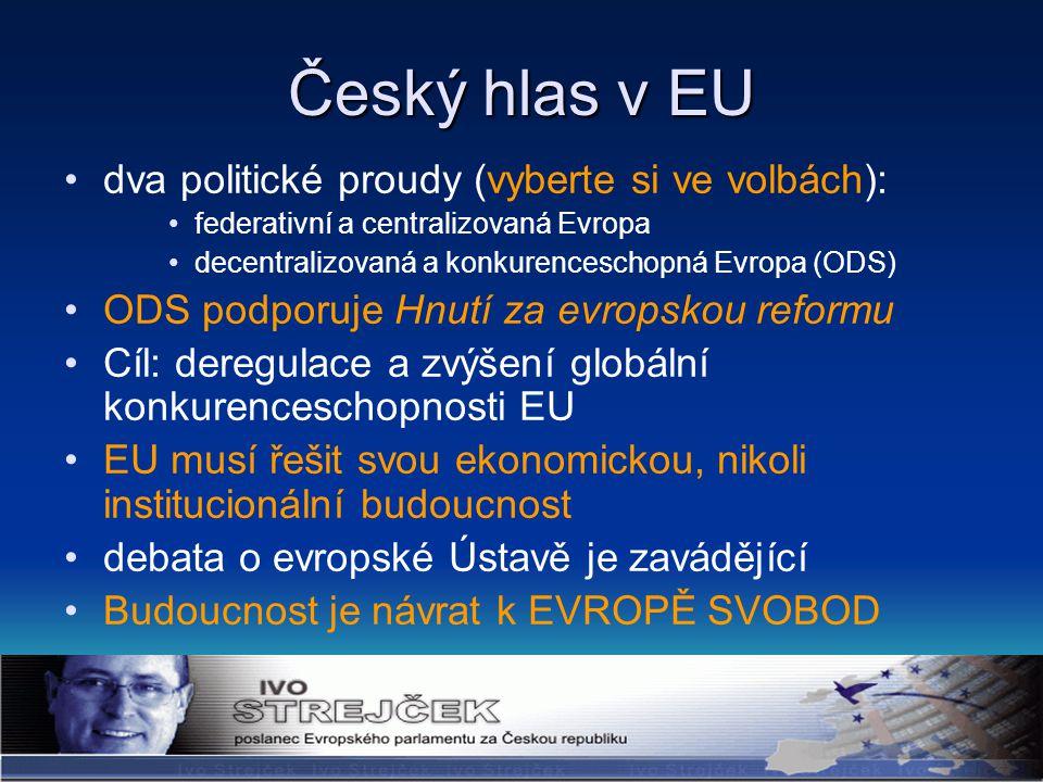 Český hlas v EU dva politické proudy (vyberte si ve volbách): federativní a centralizovaná Evropa decentralizovaná a konkurenceschopná Evropa (ODS) ODS podporuje Hnutí za evropskou reformu Cíl: deregulace a zvýšení globální konkurenceschopnosti EU EU musí řešit svou ekonomickou, nikoli institucionální budoucnost debata o evropské Ústavě je zavádějící Budoucnost je návrat k EVROPĚ SVOBOD