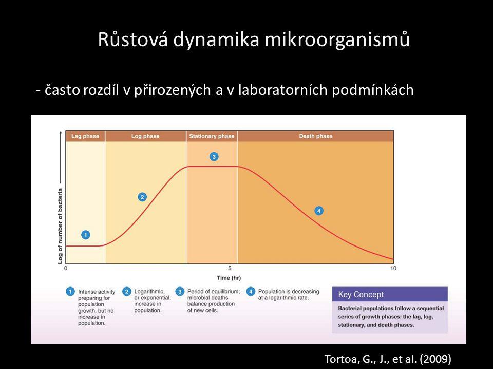 Růstová dynamika mikroorganismů Tortoa, G., J., et al.