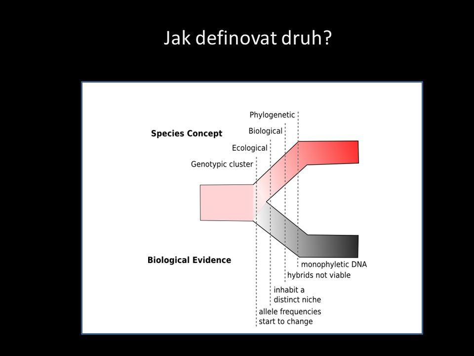 Jak definovat druh http://theatavism.blogspot.com/2009/06/some-answers-on-speciation.html