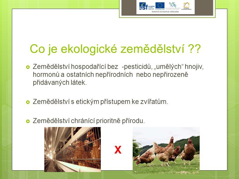Základní pojmy EZ BioproduktBiopotraviny Produkt přechodného období