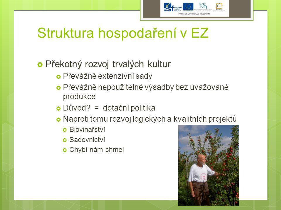 Struktura hospodaření v EZ  Překotný rozvoj trvalých kultur  Převážně extenzivní sady  Převážně nepoužitelné výsadby bez uvažované produkce  Důvod.