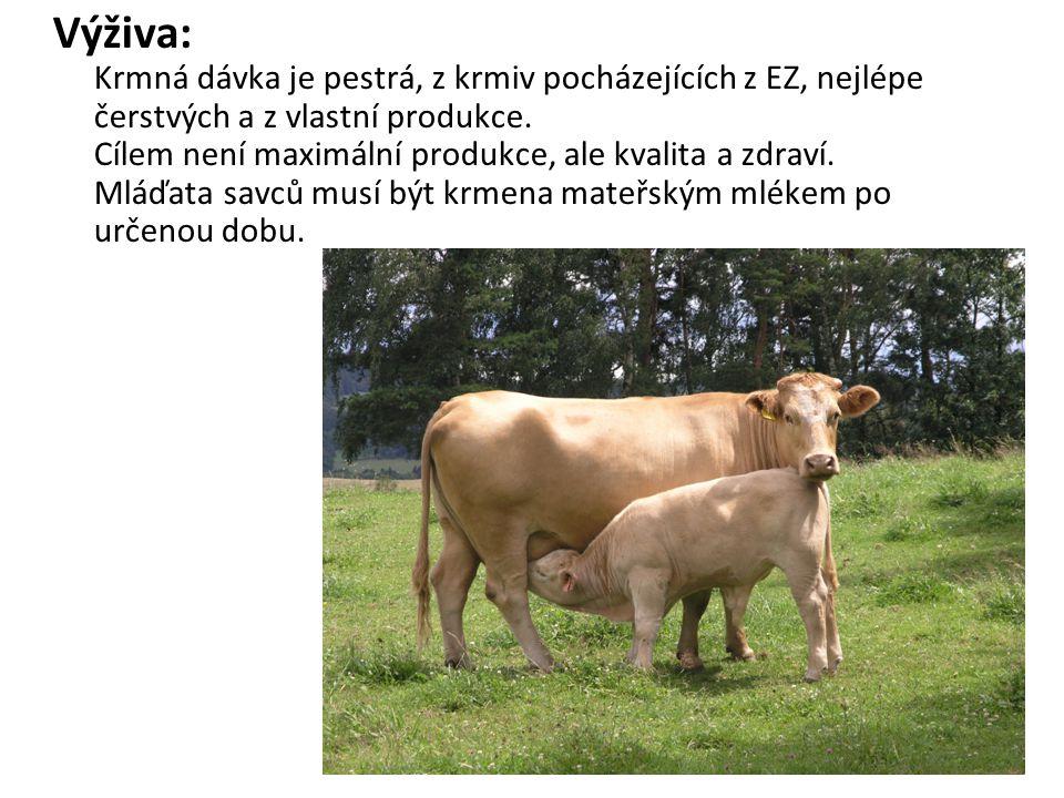 Výživa: Krmná dávka je pestrá, z krmiv pocházejících z EZ, nejlépe čerstvých a z vlastní produkce. Cílem není maximální produkce, ale kvalita a zdraví