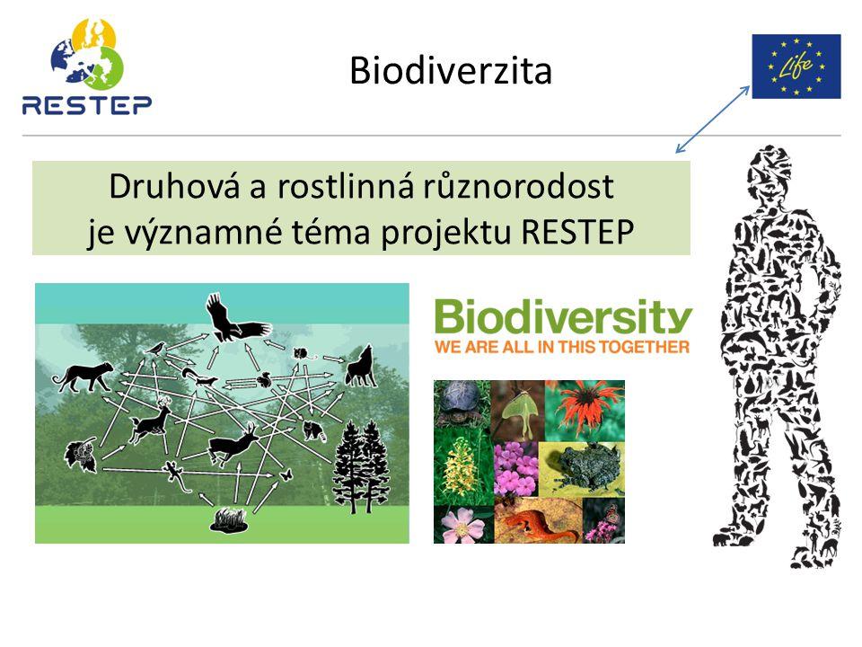 Biodiverzita Druhová a rostlinná různorodost je významné téma projektu RESTEP